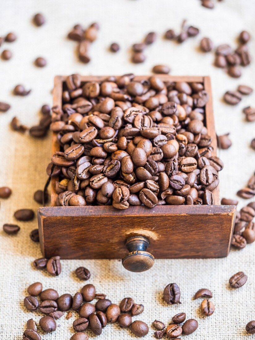 Coffee beans in little drawer of an old coffee grinder