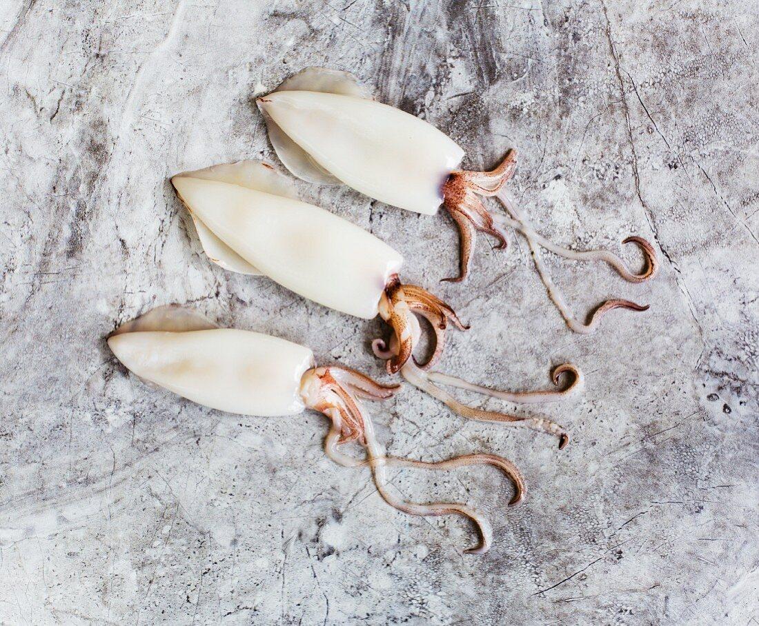 Three squid on a tile