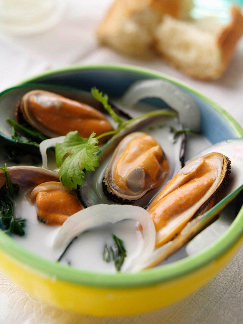 Coconut mussel stew