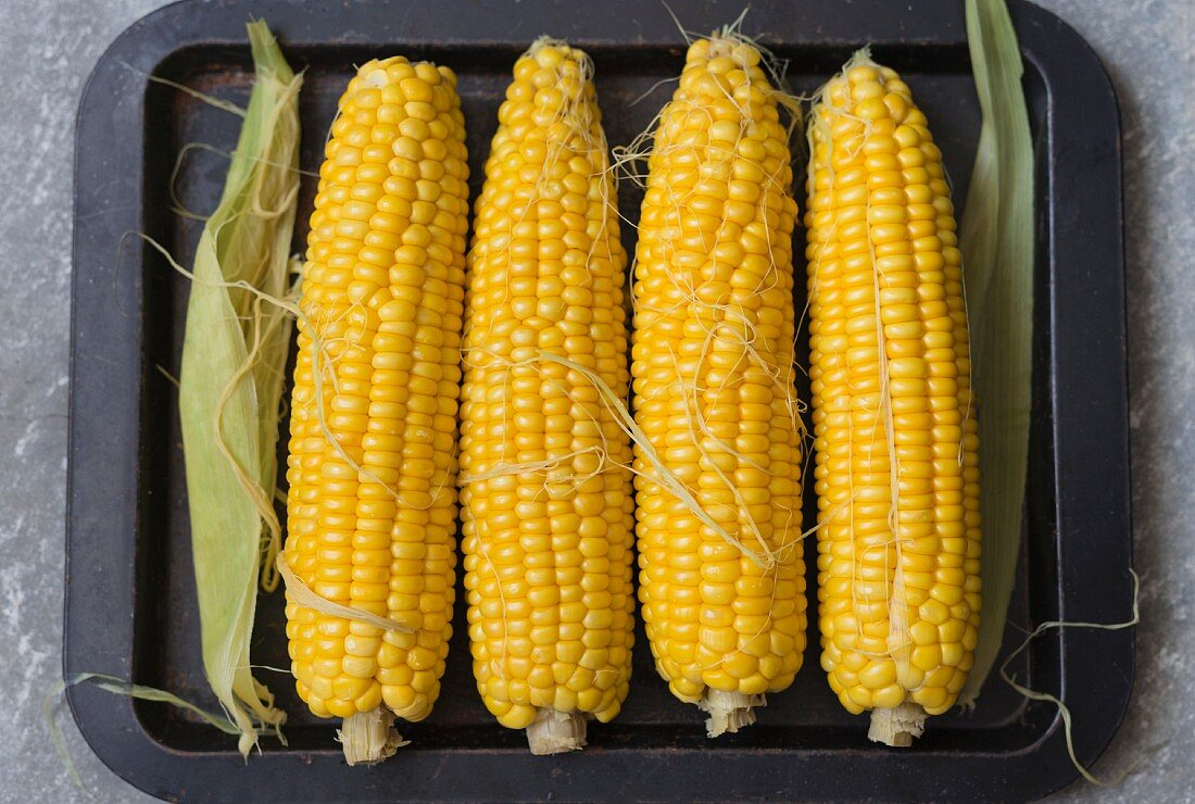 Four raw corn cobs on the stove (top view)