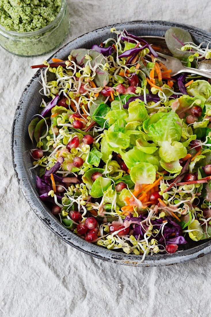 Brussels sprout salad with pomegranate seeds, lentil sprouts, carrot strips and red cabbage strips