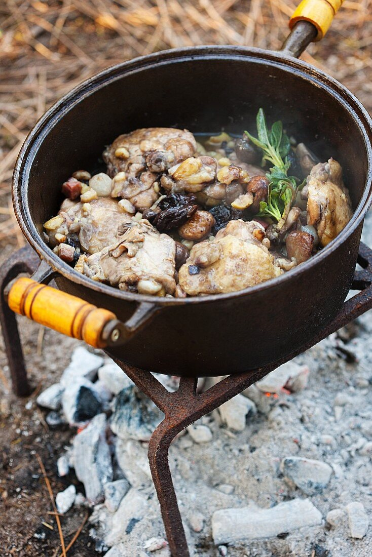 A rustic pot of meat cooking over a camp fire