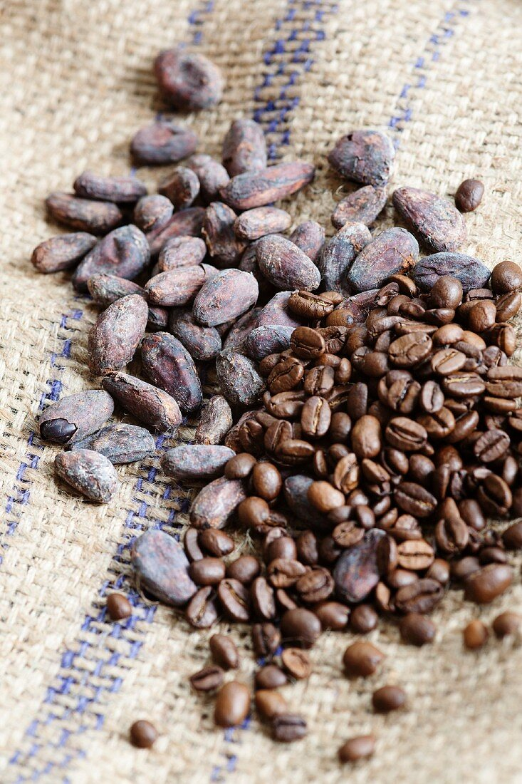 Cocoa beans and coffee beans