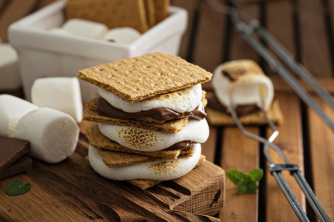 Picnic dessert smores with marshmallows, graham crackers and chocolate