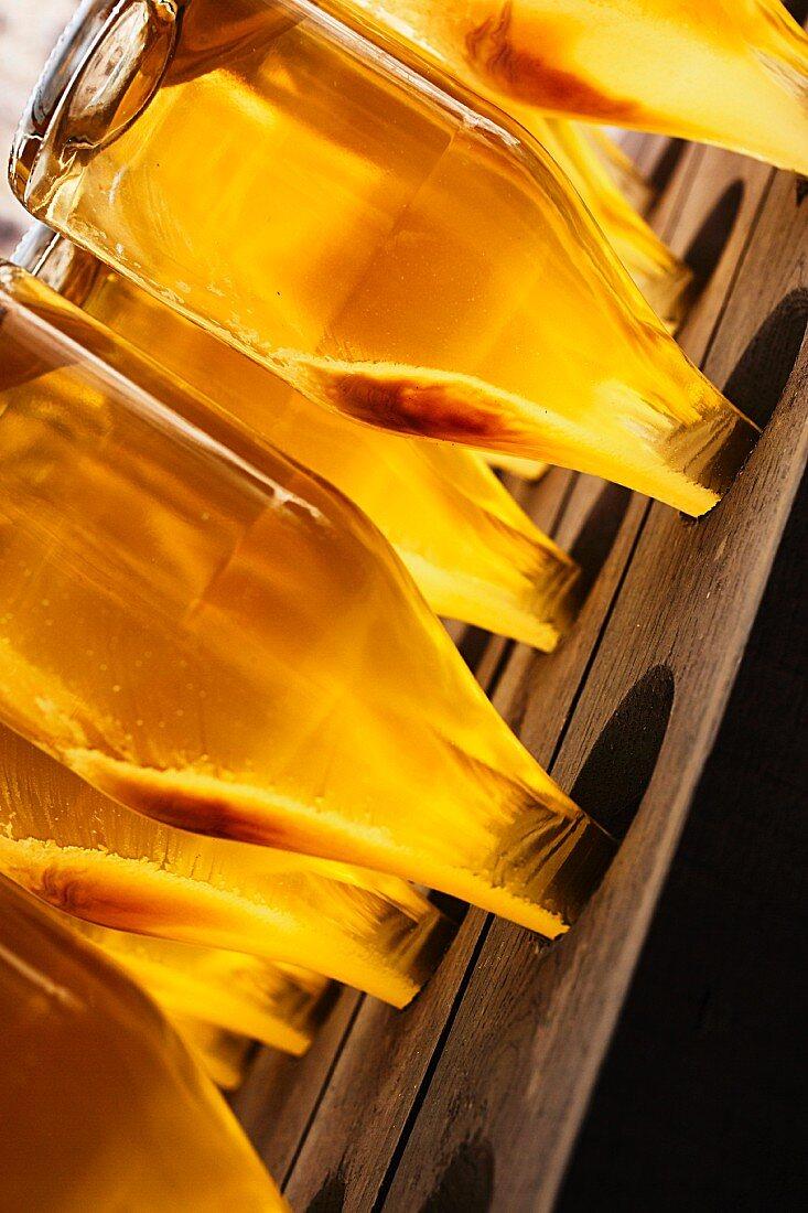 Sparkling wine bottles on a remuage rack