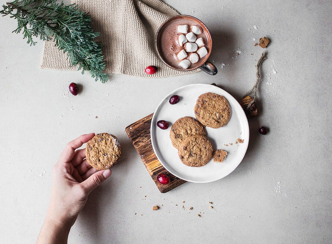 Gluten-free biscuits on a plate with a cup of hot chocolate with marshmallows behind it