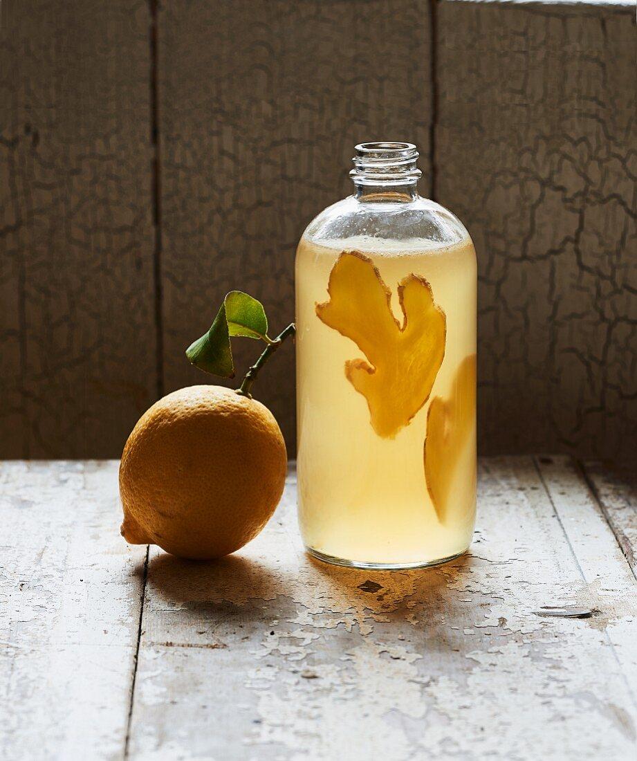 Homemade Kombucha tea with lemon and ginger in a bottle