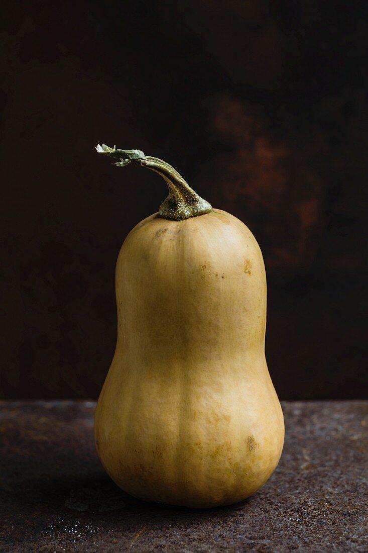 A butternut squash