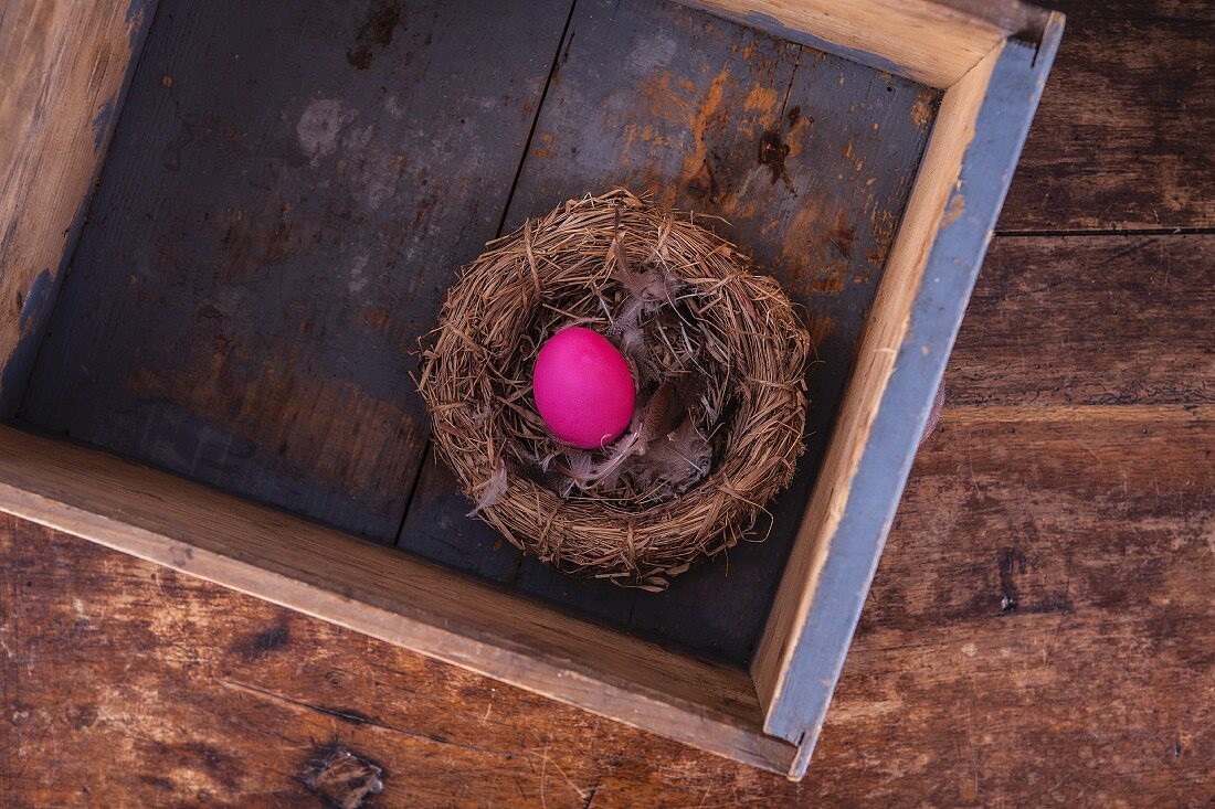A pink Easter egg in a nest