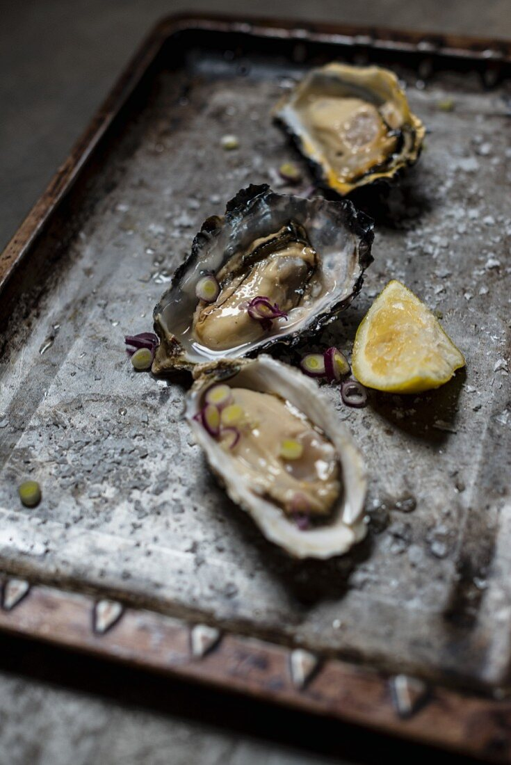 Dressed oysters served with salt and lemon