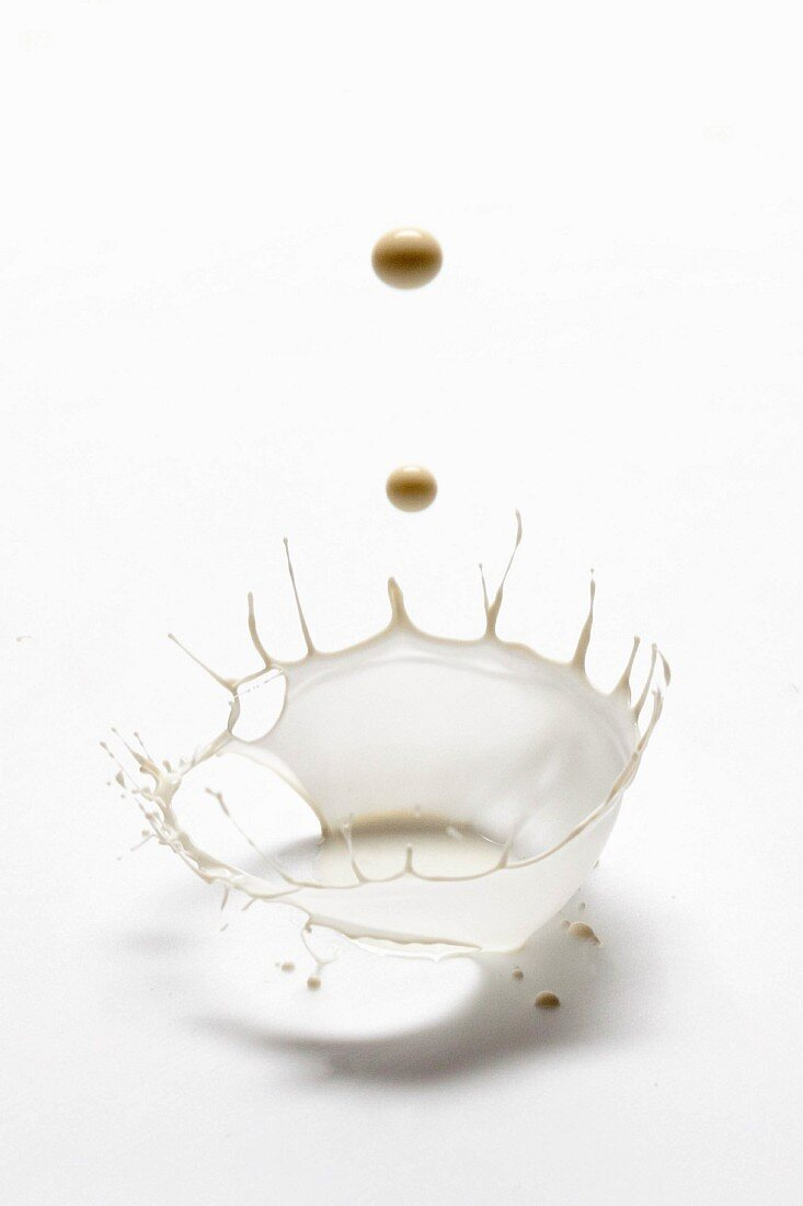 A splash of milk on white background