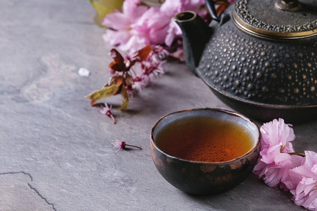 Black iron teapot and traditional ceramic cup of tea with blossom pink flowers cherry branch over gray texture background