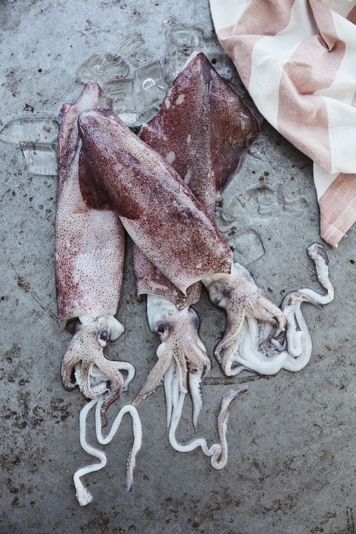 Three raw squid on a stone background (top view)