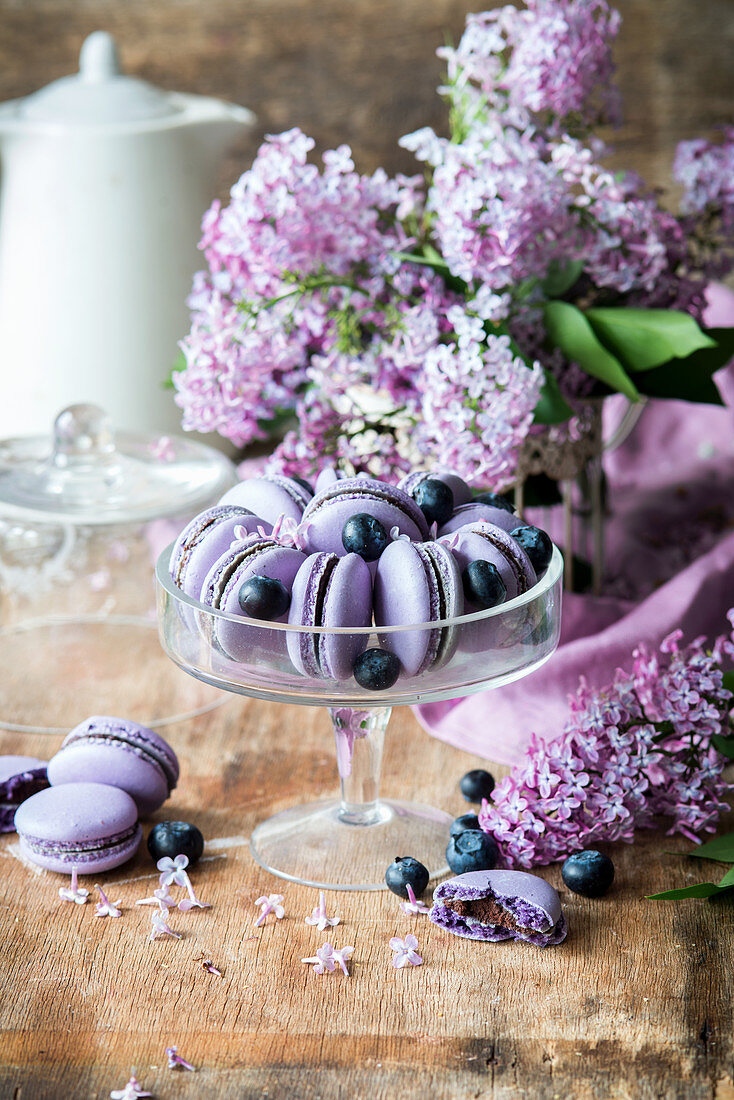 Blueberry macaroons on a glass stand