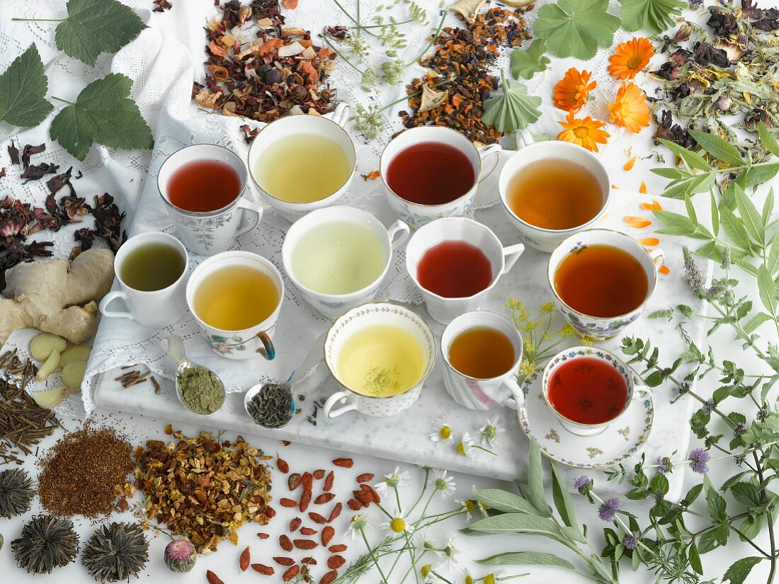 A still life with various herbal and fruit teas
