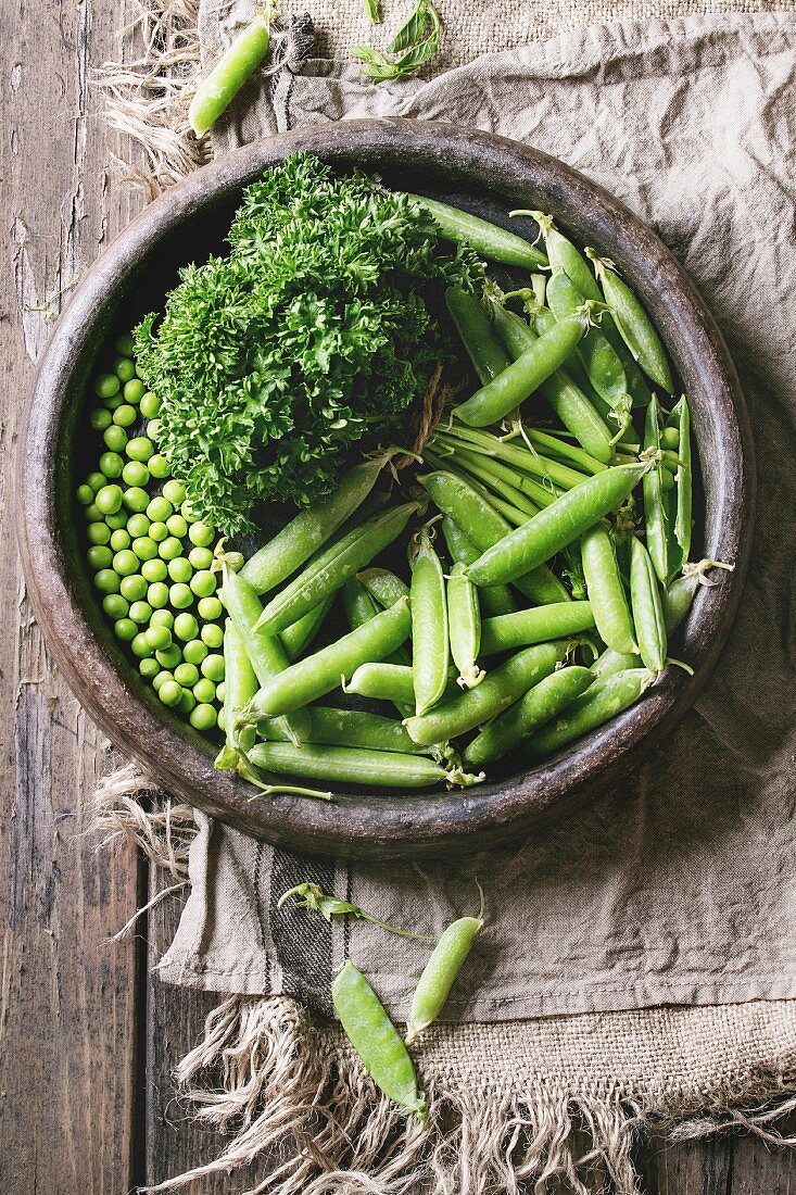 Young organic green pea pods and peas in terracotta tray and bundle of parsley over old dark wooden planks