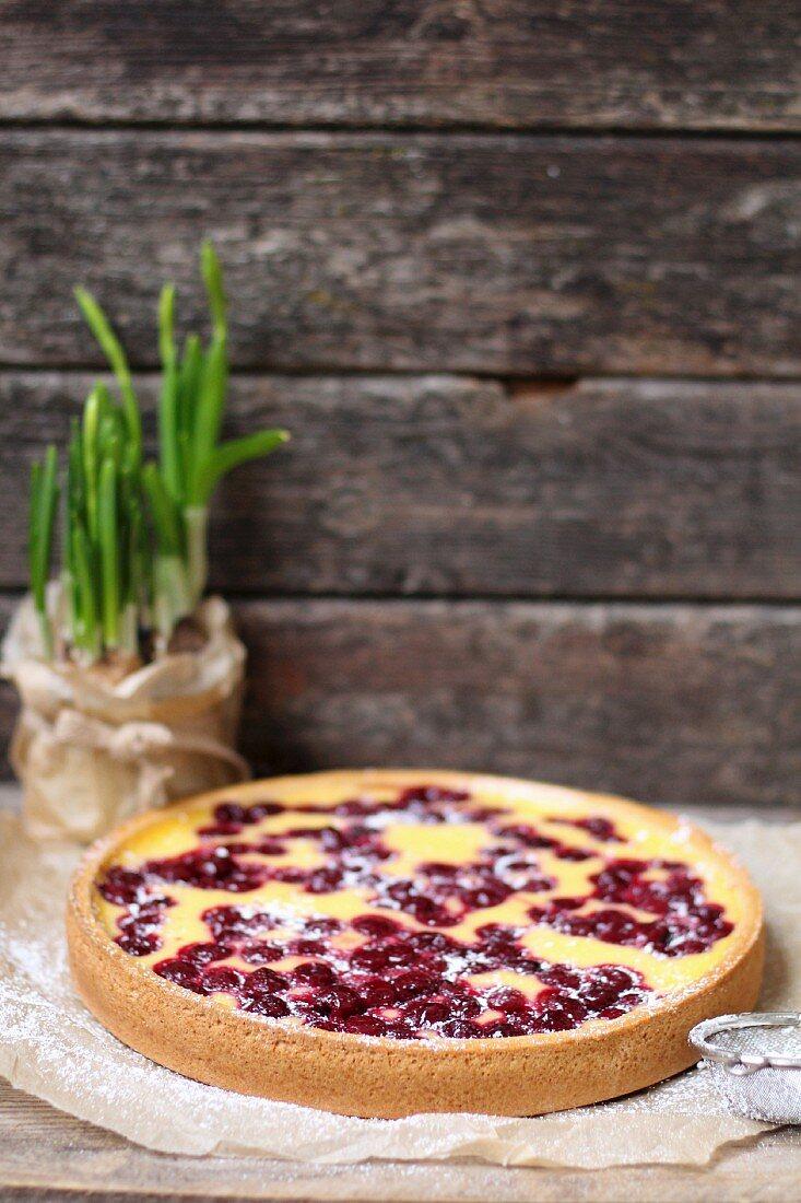 Vanilla pudding cake with cherries