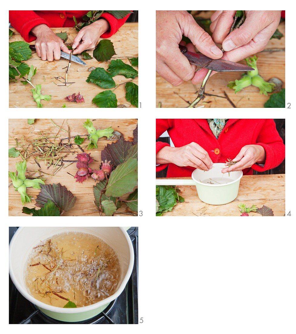 Abgekochte Haselnussrinde zubereiten