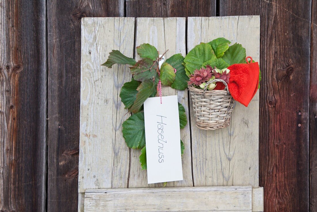Hazel leaves and basket of hazel nuts on wooden wall