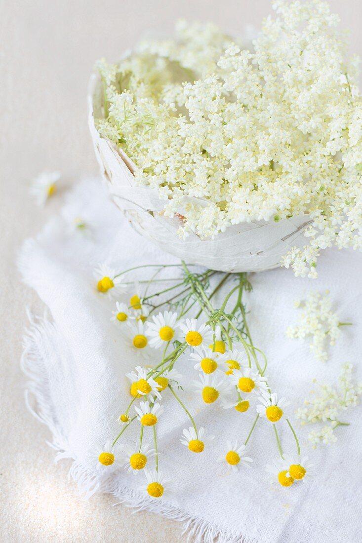 Elderflowers in a papier-mâché bowl with fresh chamomile blossoms