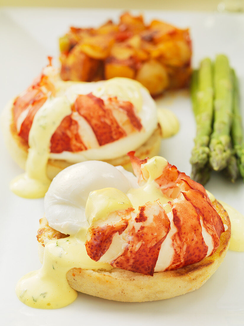 Lobster with Eggs Benedict