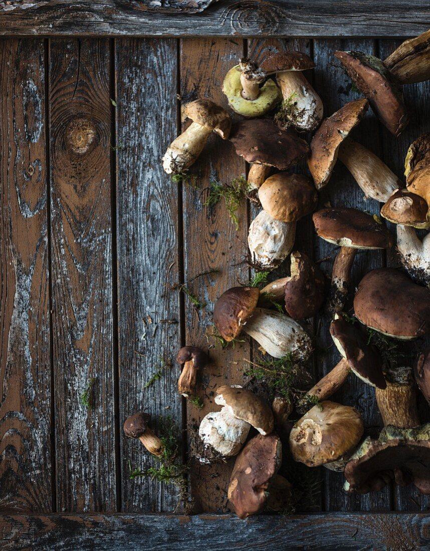 Fresh wild mushrooms on a wooden background