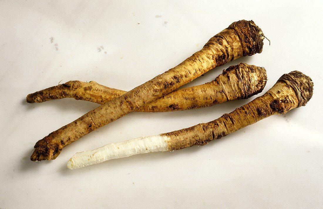 Three Horseradish Roots