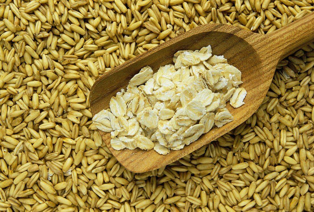 Oat Flakes in a Wooden Scoop; Oat Grains