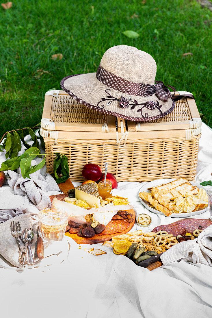 A summer picnic at a park