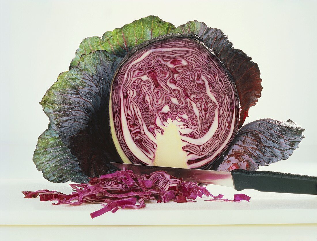 Cross Section of Red Cabbage