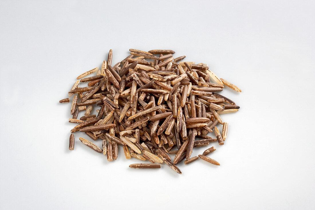 Mahnomen wild rice