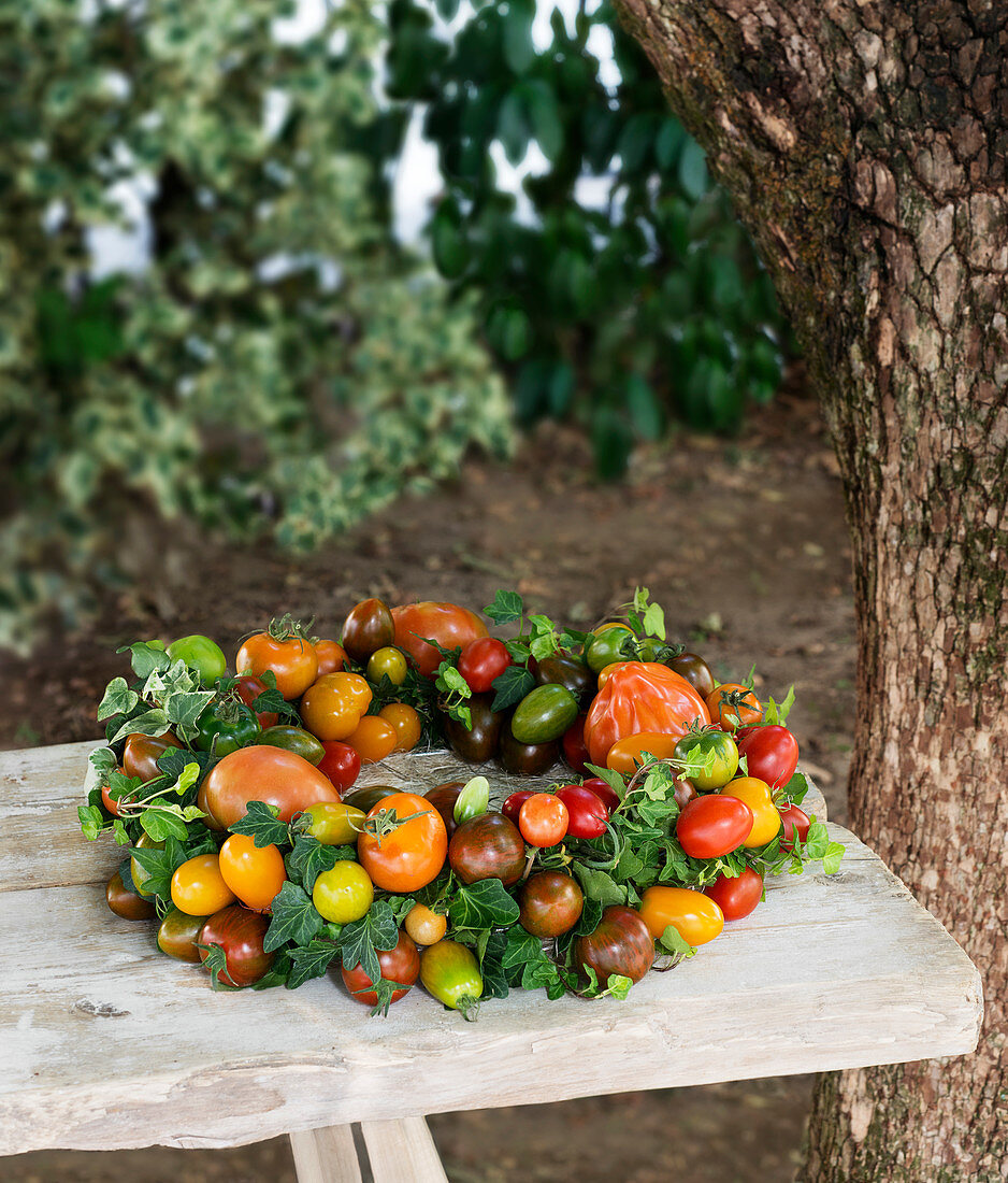 Handmade wreath of ivy and multicoloured tomatoes