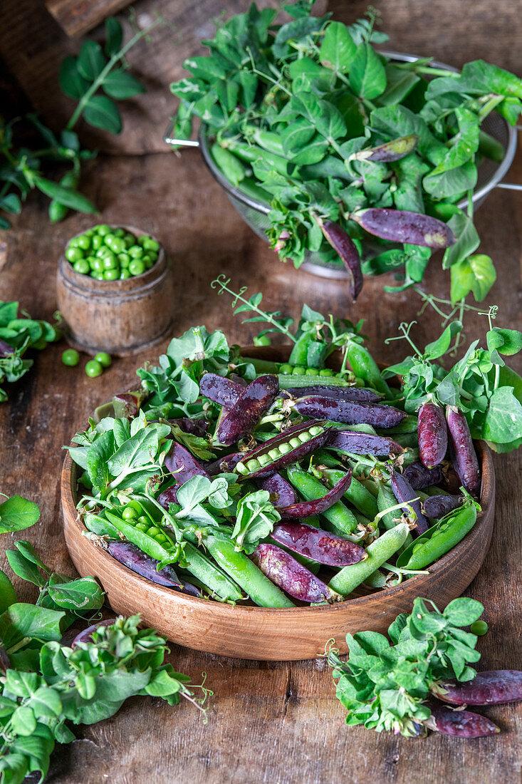 Green and purple peas