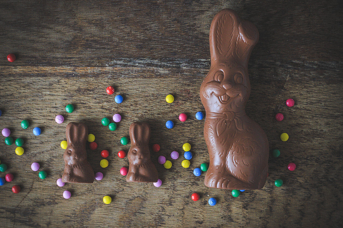 Chocolate bunnies and colorful chocolate chips