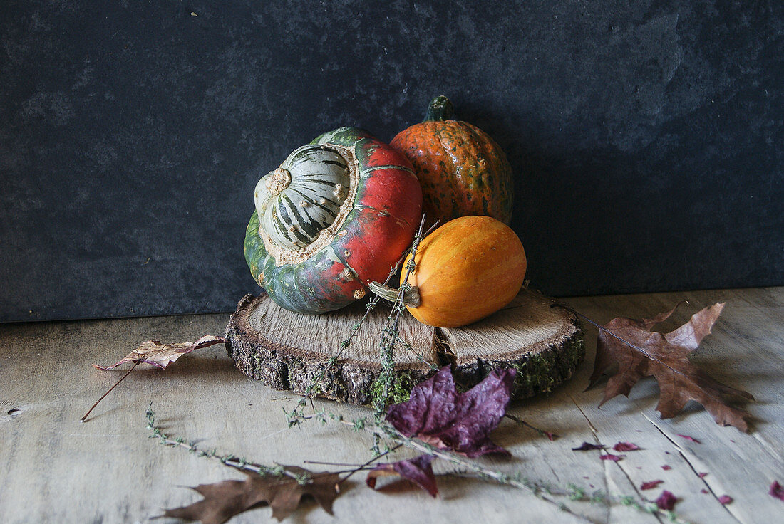 Bright pumpkin composition on wood slice
