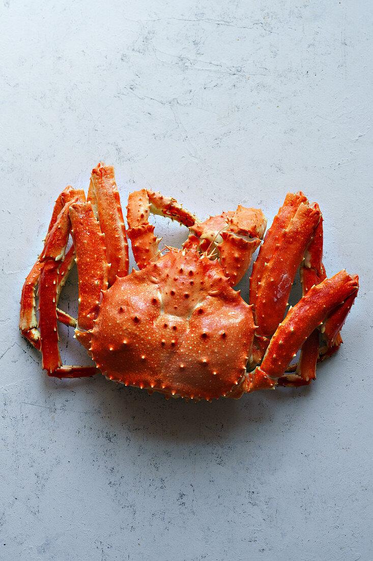Big whole alaskan crab