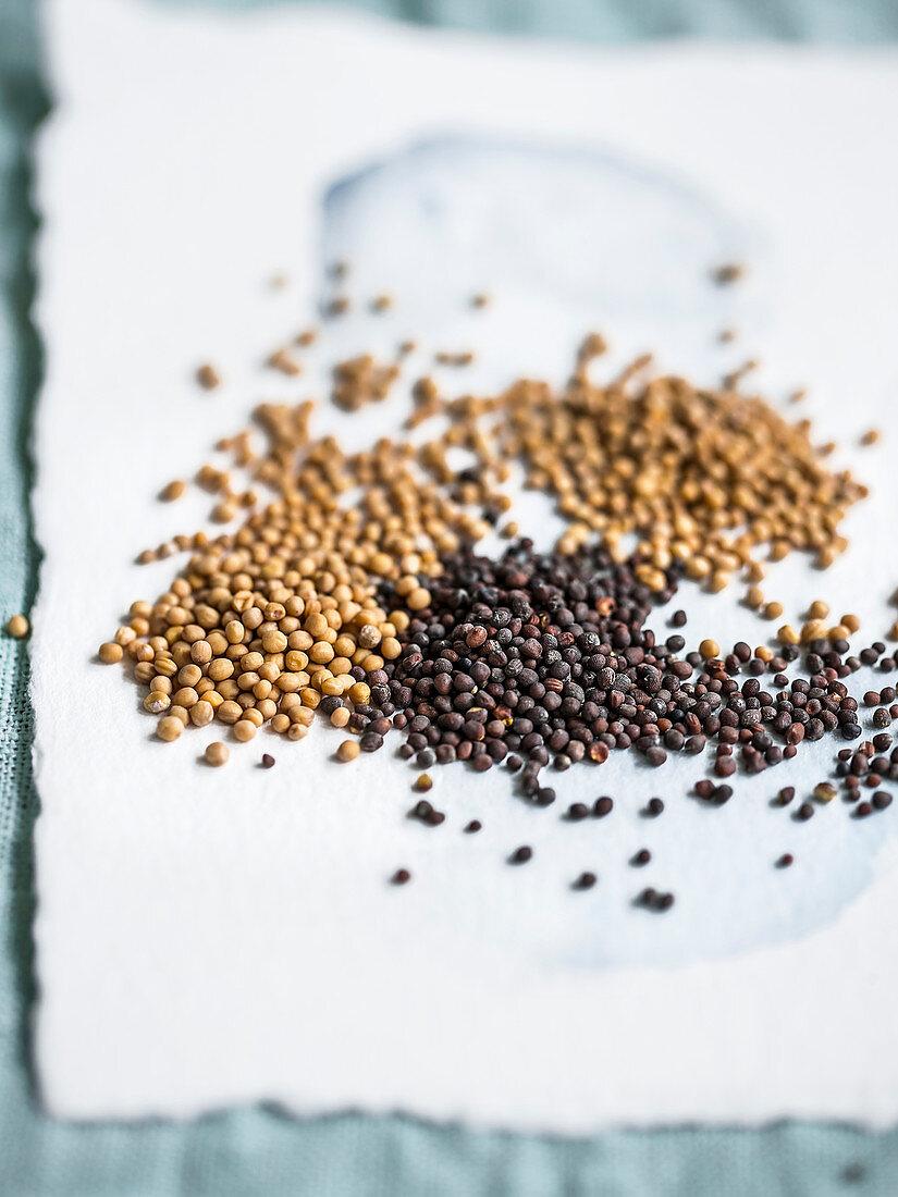 Various mustard seeds