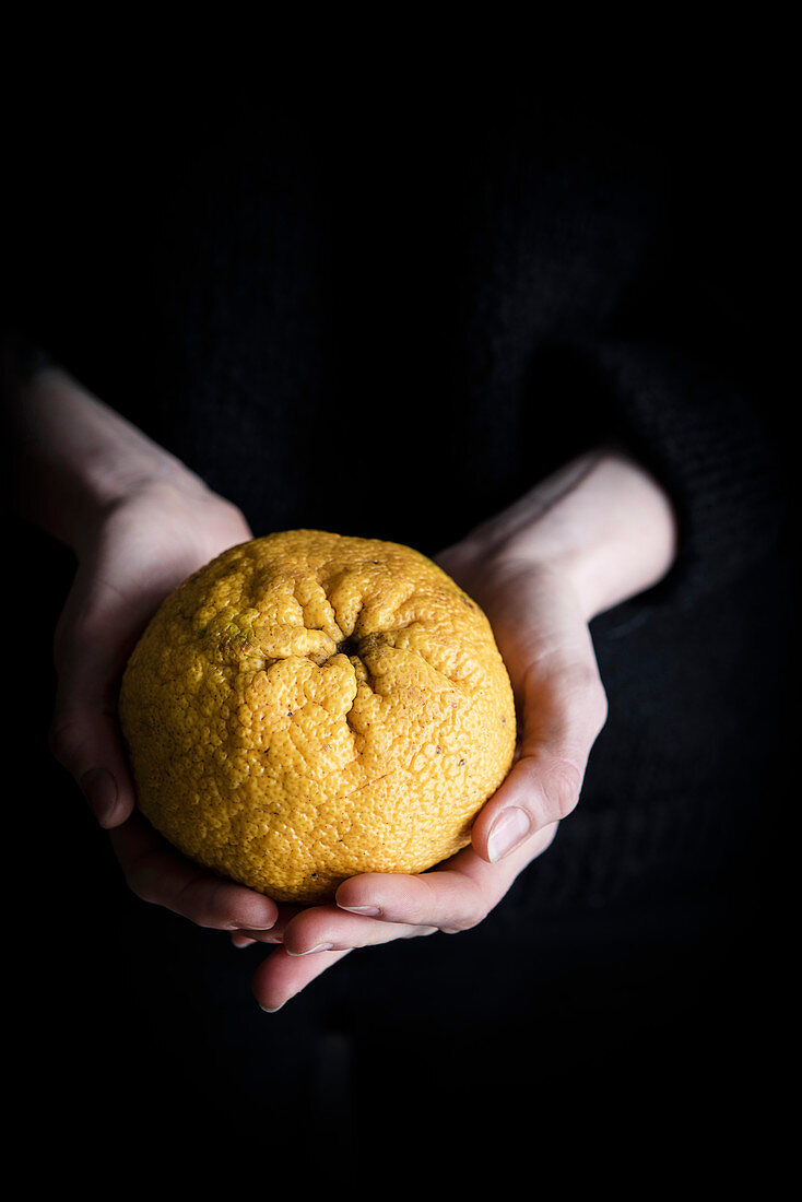 A person holding an ugli fruit