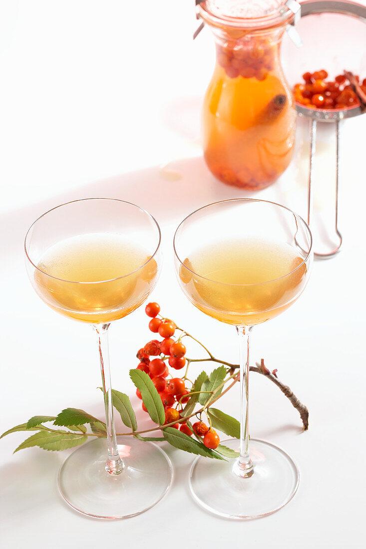 Homemade rowan berry liqueur with honey, cinnamon and cloves