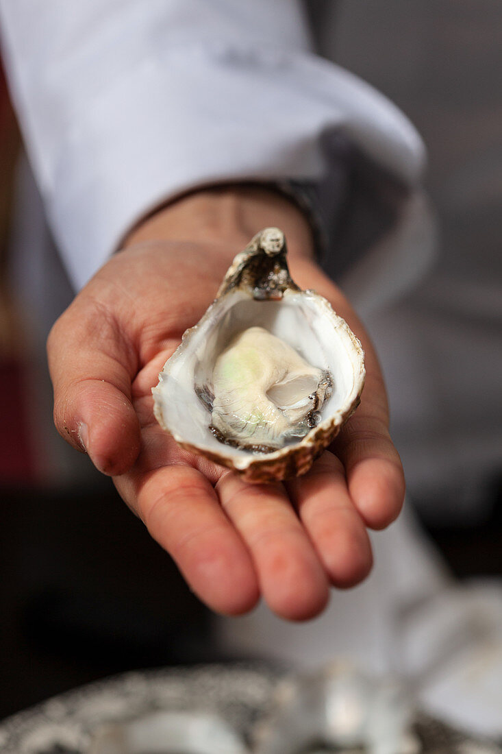A person holding a freshly opened oyster