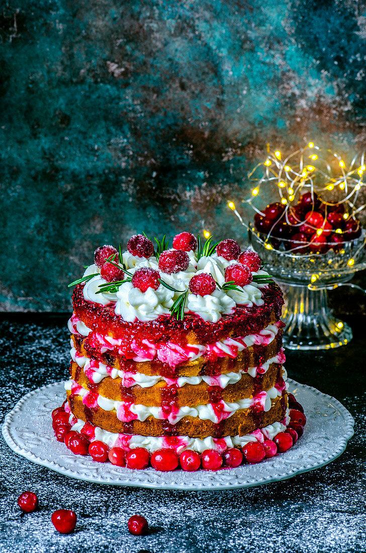 Christmas sponge cake with cranberries
