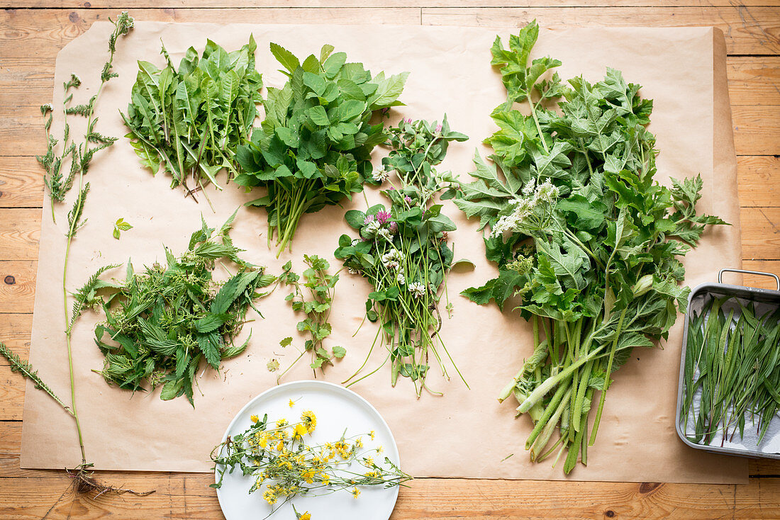 Fresh wild herbs, ready for drying
