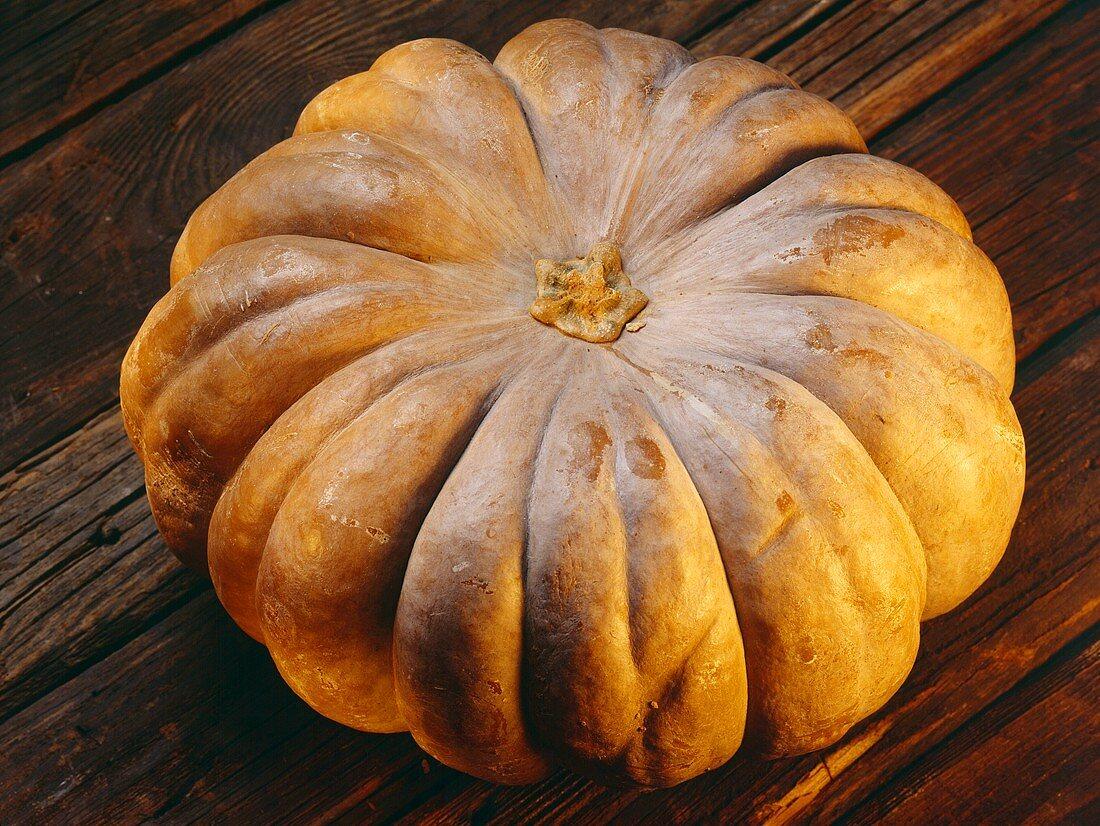One Whole Pumpkin