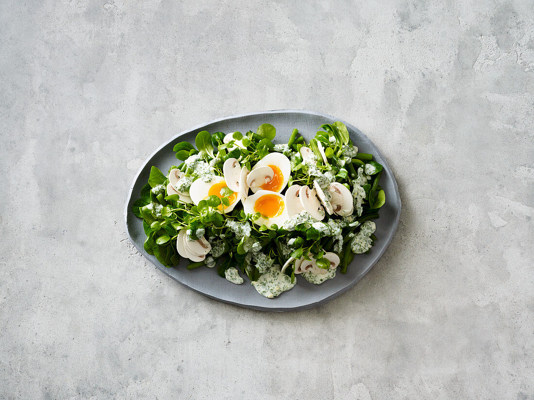 Watercress salad with green beans, egg and a herb dressing