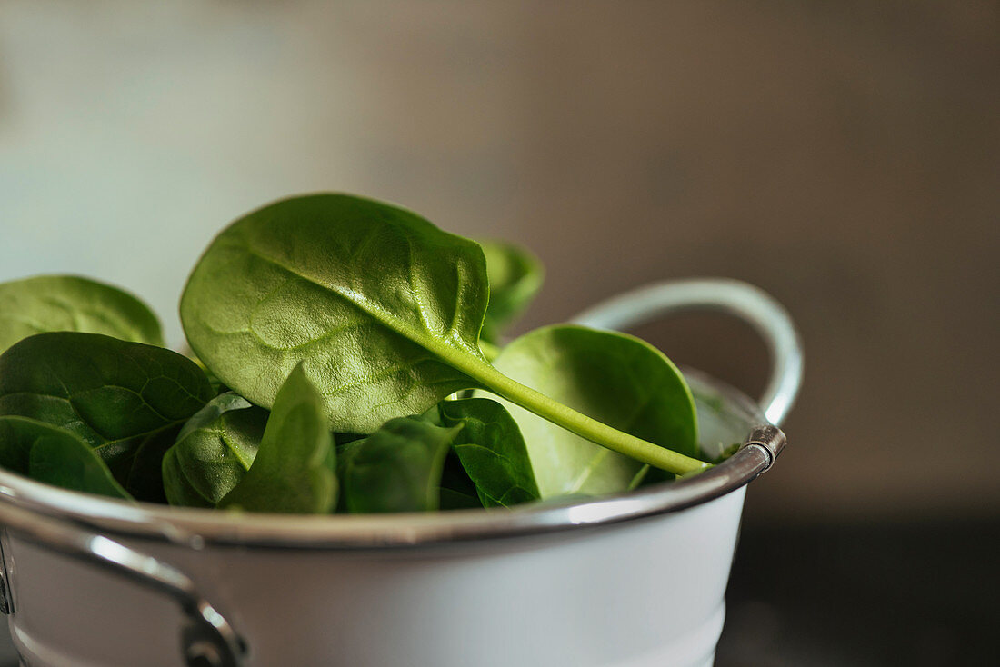 Fresh spinach on a rustic white metal crockery bowl