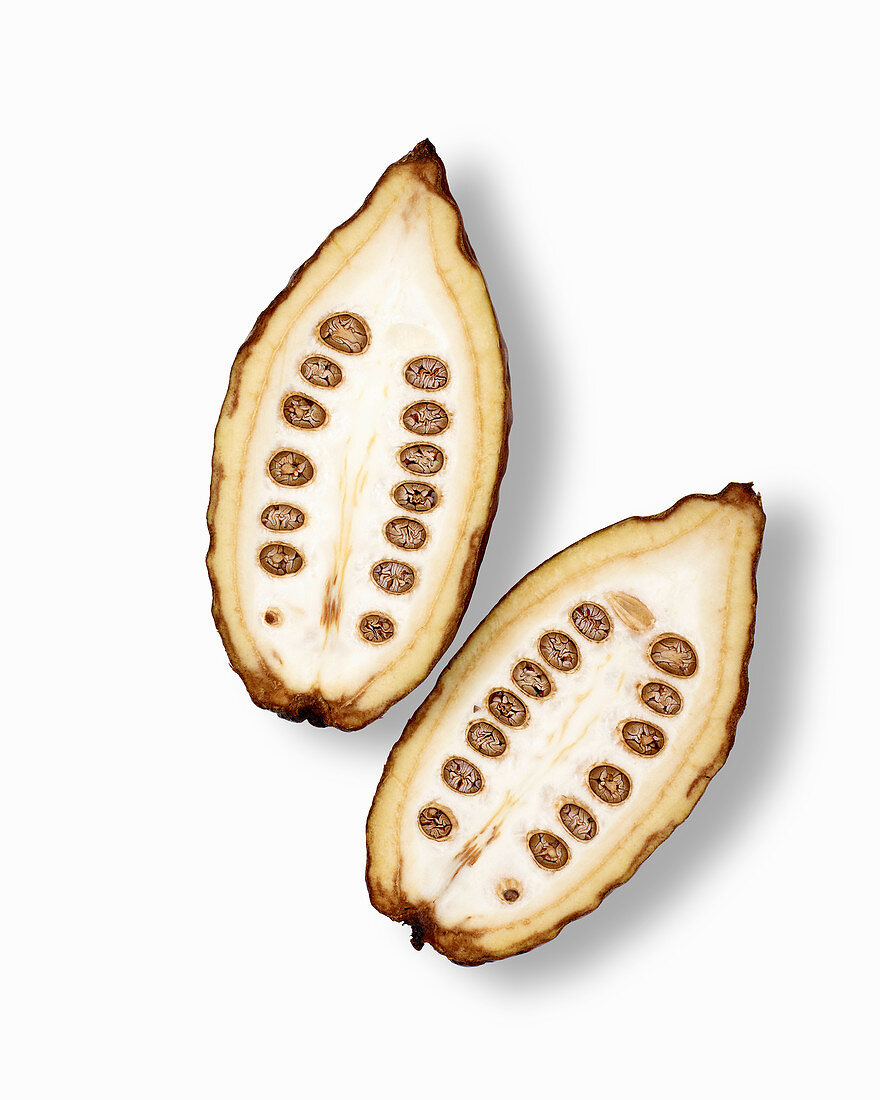 Halved cocoa pod on a white background