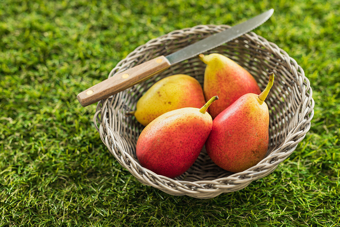 Four pears on a basket on green grass with knife
