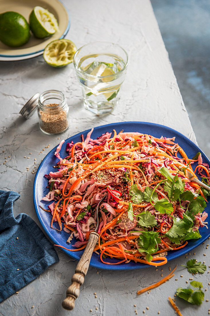 Red and white cabbage crunchy salad with lime, carrot, radish, spring onion, coriander and sesame seeds