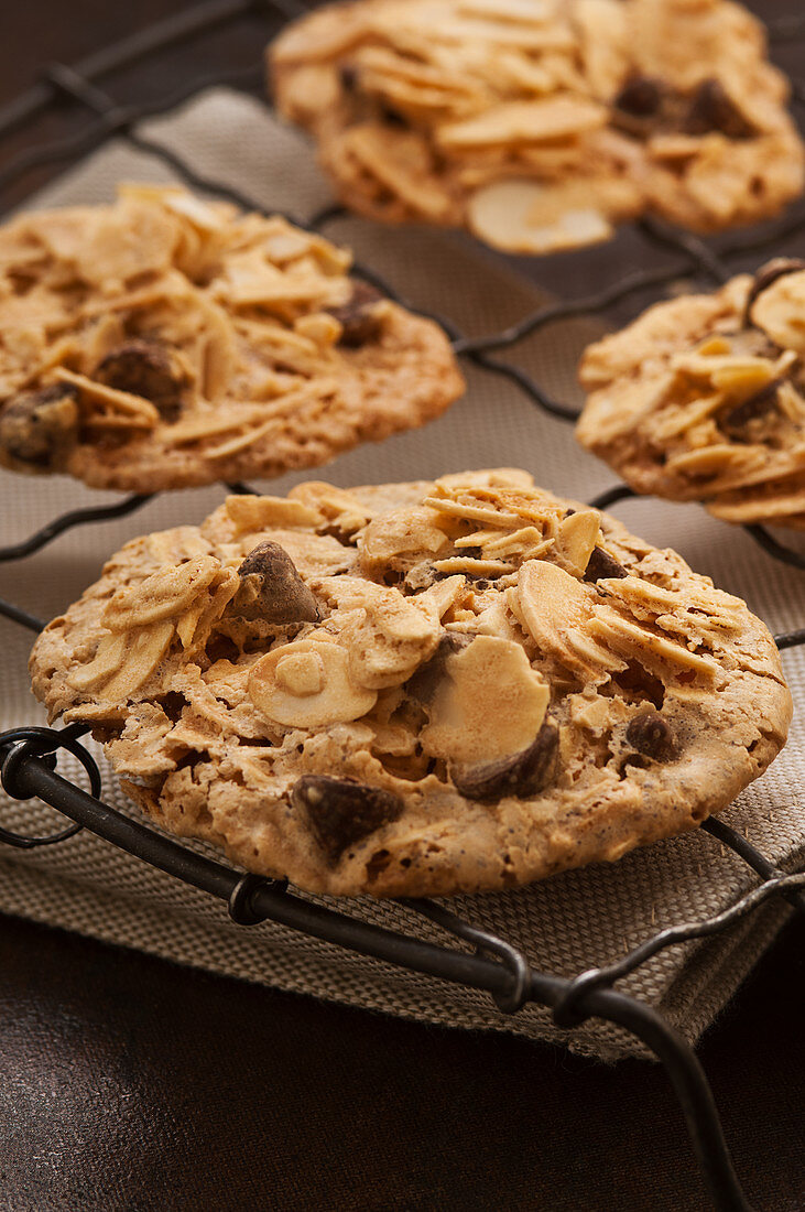 Almond chocolate biscuits