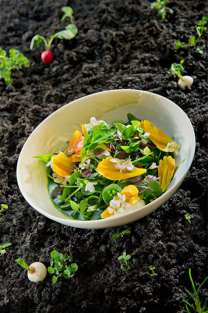 Natural cuisine: green gazpacho with wild vegetables and edible flowers
